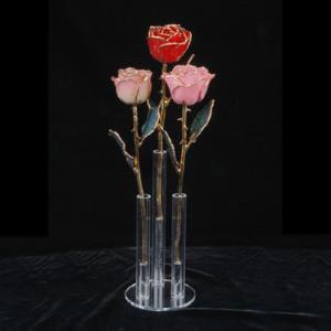 Holds 3 Roses
